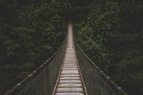lune-miel-costa-rica-nature-pont-suspendu
